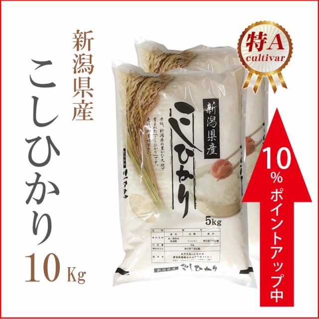 タイムセール 米 10kg 新潟県産 コシヒカリ 1等米...