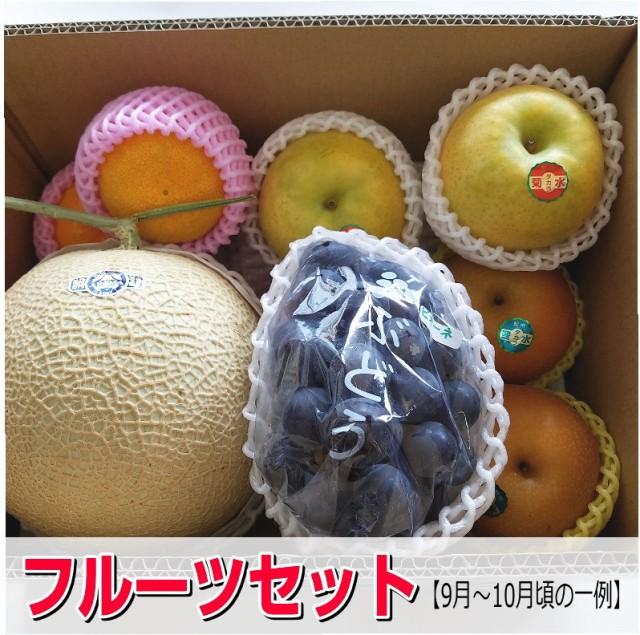 【送料無料】旬のフルーツセット/フルーツ詰め合わせ/うれしい福袋4980