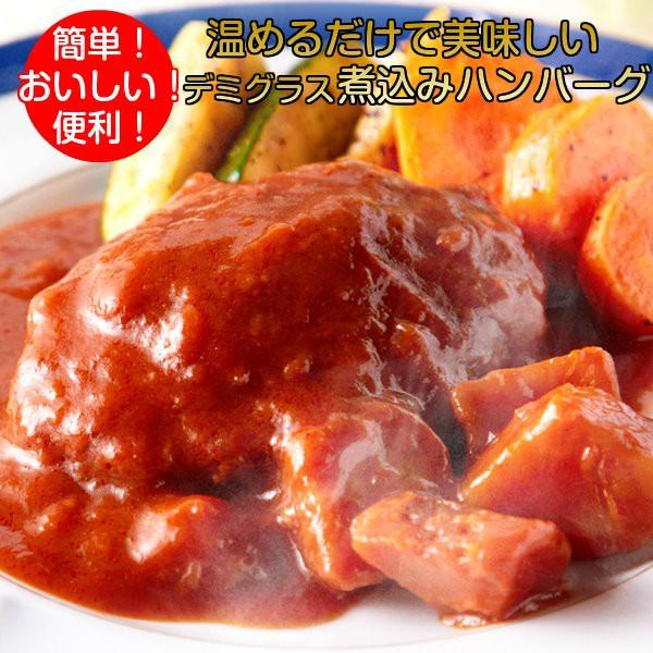 煮込みハンバーグ 野菜入りデミグラスソース 3人...