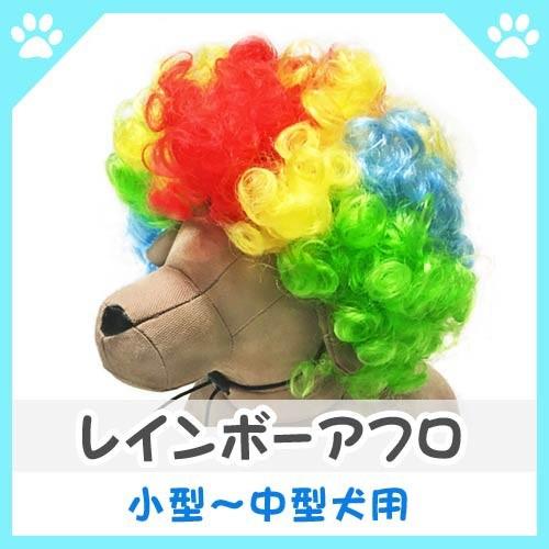 [特典あり] [大幅値下げ]  犬 服 ドッグウェア レ...
