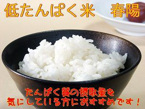 宮城県産 低たんぱく米 『春陽』 白米10k