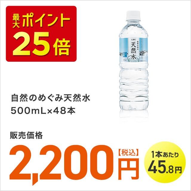 自然のめぐみ天然水 500mL×48本 飲料 水