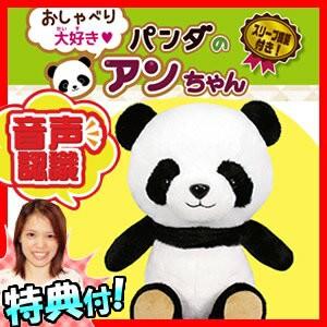 パンダのアンちゃん 音声認識人形 お話し人形 お...