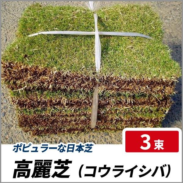 高麗芝 (コウライシバ) 3束 グランドカバー ポピ...