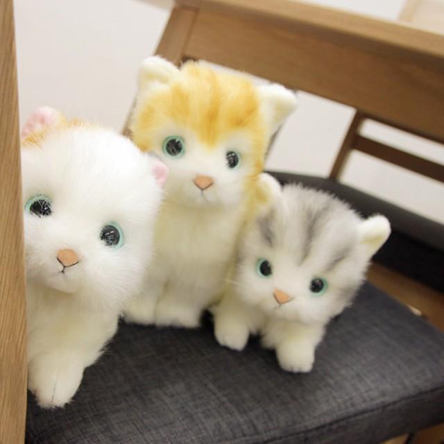 日本製リアル 猫のぬいぐるみ 子猫20cm(リアルな...