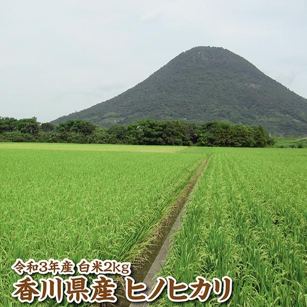【新米】【令和3年産】香川県産ヒノヒカリ白米2kg...