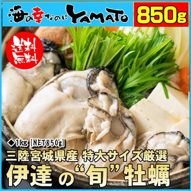 【クーポンで1,000円OFF ※他商品との同梱不可】...