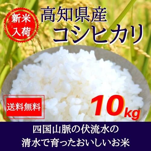 令和元年産 高知県産コシヒカリ10kg(5kg×2袋) ...