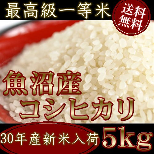 米 お米 5kg 魚沼産コシヒカリ 30年産 送料無料 ...