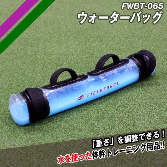 体幹トレーニングに FWBT-065 ウォーターバック
