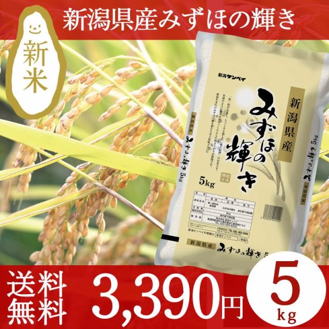 新米 30年産 新潟県産みずほの輝き 4kg 条件付送...