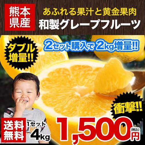 和製グレープフルーツ 4kg 河内晩柑 送料無料 2セ...