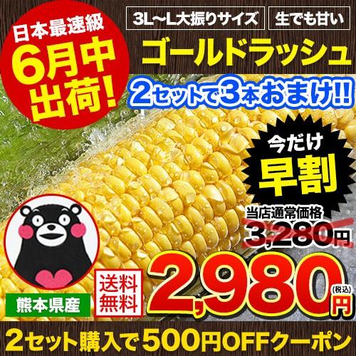 ★生食可★日本最速級6月中出荷 とうもろこし ゴ...