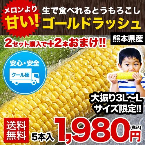 クール便 ゴールドラッシュ 5本入り 送料無料 コ...