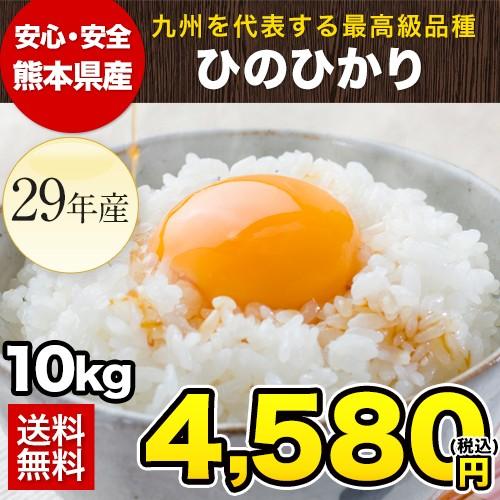 米 ひのひかり 10kg 10キロ 送料無料 熊本県産 平...