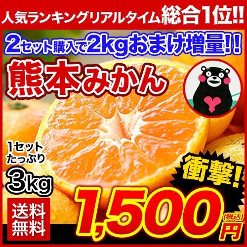みかん 送料無料 たっぷり3kg 熊本 みかん 2セッ...