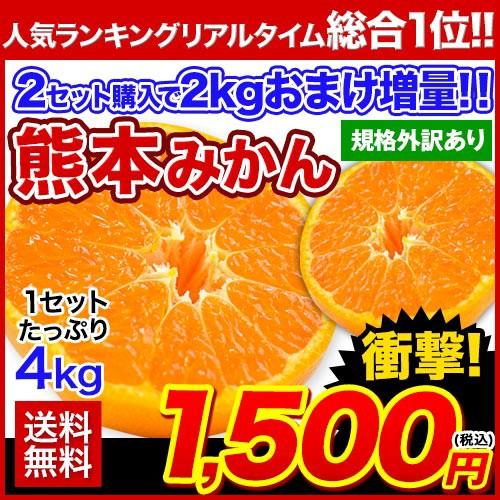 みかん 送料無料 たっぷり4kg 熊本 みかん 2セッ...