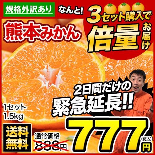 【緊急延長】■3セット購入で倍量届く■みかん1.5...