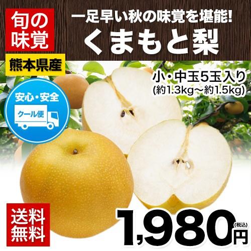 梨 の名産地 熊本県産 くまもと 梨 約1.3kg〜約1....
