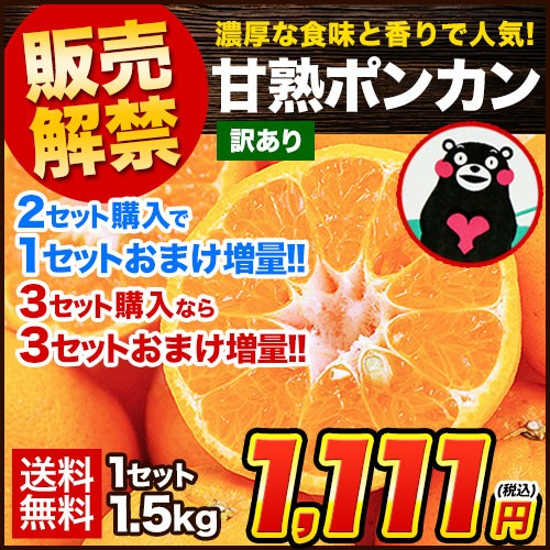 訳あり 甘熟 ポンカン 1.5kg 送料無料 熊本県産 みかん ミカン 1月末-2月中旬頃順次出荷予定 旬 フルーツ オレンジ