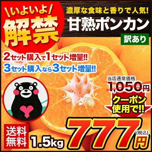 【クーポンで1,050円⇒777円】熊本産甘熟ポンカン1.5kg送料無料 訳あり 2セットで1セット増 複数購入1箱おまとめ 1