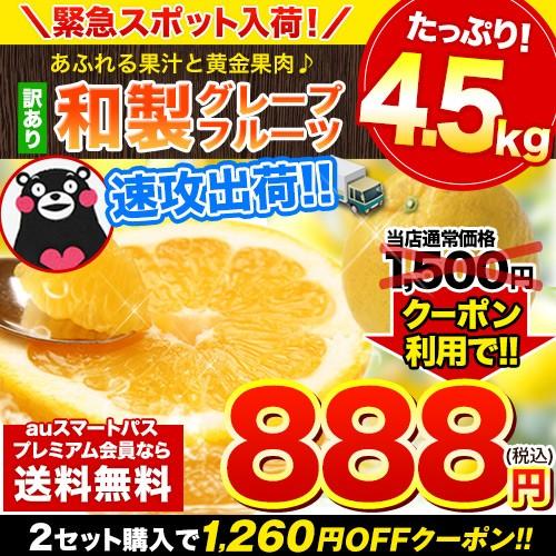 みかん 【5日間限定★緊急セール】大容量4.5kg 熊...