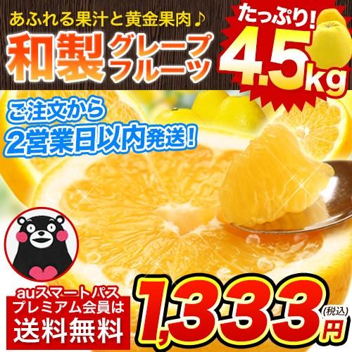 熊本県産 みかん 4.5kg