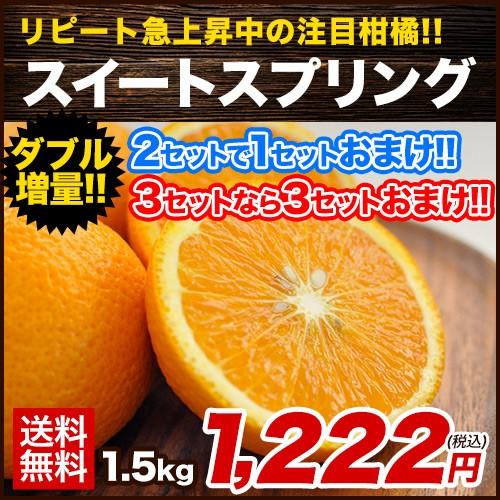 スイートスプリング 1.5kg 熊本県産 送料無料 旬 の みかん 熊本産 取り寄せ 通販 (3L〜Lサイズ/3L-L混合) ※複数購入の場合1箱におまと