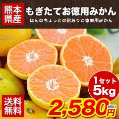 熊本 もぎたて お徳用みかん 5kg ちょっと訳あり 送料無料 家庭用 果物 7-14営業日以内に出荷(土日祝除く)