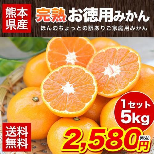 熊本 完熟 お徳用 みかん 5kg ちょっと訳あり 送料無料 家庭用 果物 7-14営業日以内に出荷予定(土日祝除く)