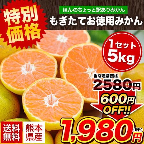 熊本 もぎたて お徳用みかん 5kg ちょっと訳あり 送料無料 家庭用 果物 10月中旬-11月上旬頃より順次出荷