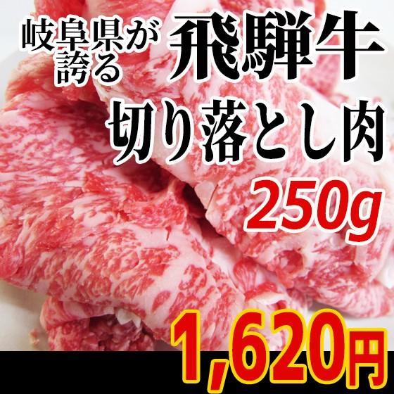 【肉のひぐち】飛騨牛切り落とし肉250g×1パック...