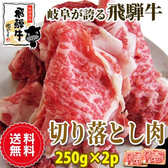 ★『送料無料・訳あり★飛騨牛切り落とし肉250g×...
