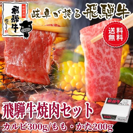 父の日 ギフト 【送料無料】飛騨牛焼肉セット カ...
