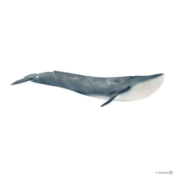Schleich (シュライヒ) シロナガスクジラ 14806〔...