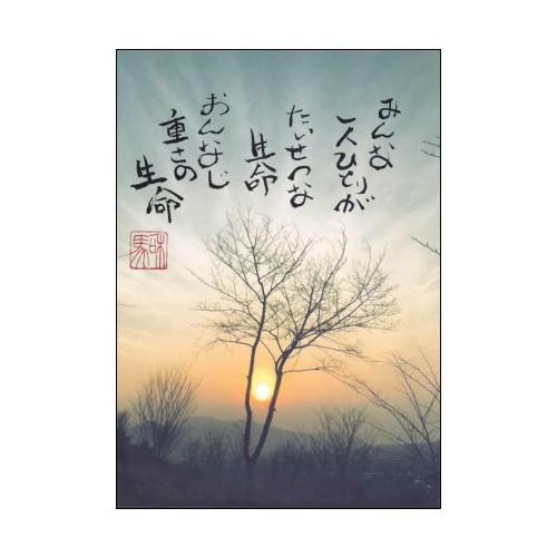 謎の詩人改め旅する詩人和馬のあなたに贈るポスト...
