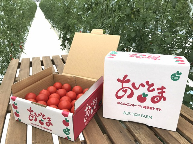 【送料無料】高糖度トマト「あいとま」1Kg
