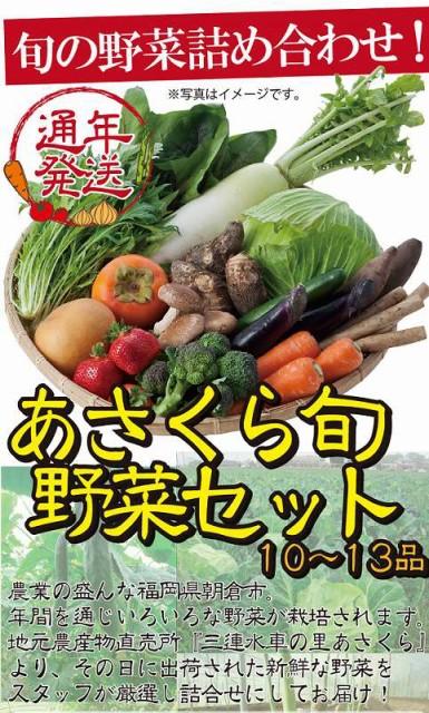 【送料無料】あさくら旬野菜セット