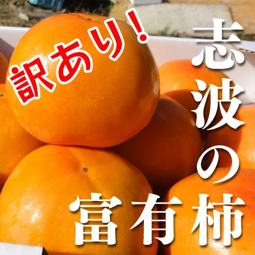 【送料無料】訳あり!福岡県産志波柿 冷蔵柿 M〜L...