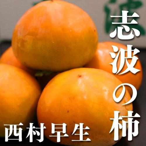【送料無料】(朝倉市特産品) 福岡県産志波柿 西村...