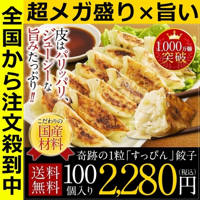 送料無料 冷凍 ぎょうざ ギフト すっぴん餃子100...