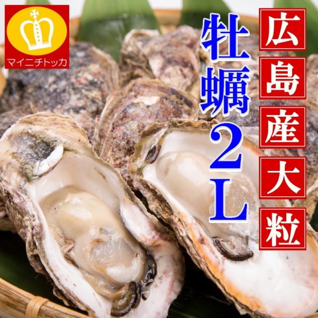牡蠣 かき カキ 送料無料 ビックサイズ 2Lサイズ...