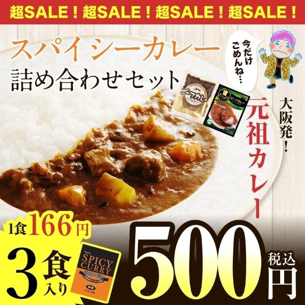 25種類のスパイシーカレー3食入り(詰め合わせセッ...