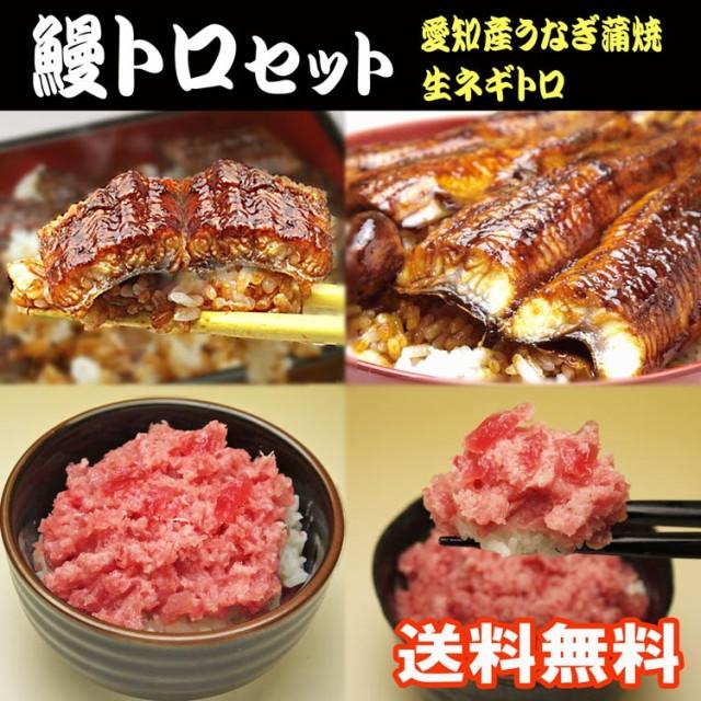 【送料無料】愛知産鰻かば焼きと生ネギトロセット...