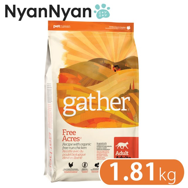 GATHER(ギャザー)フリーエーカー キャット 1.81...