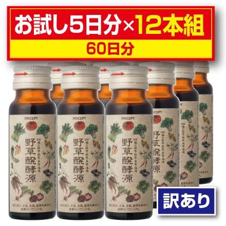 【訳あり】【送料無料】野草醗酵源(酵素ドリンク...
