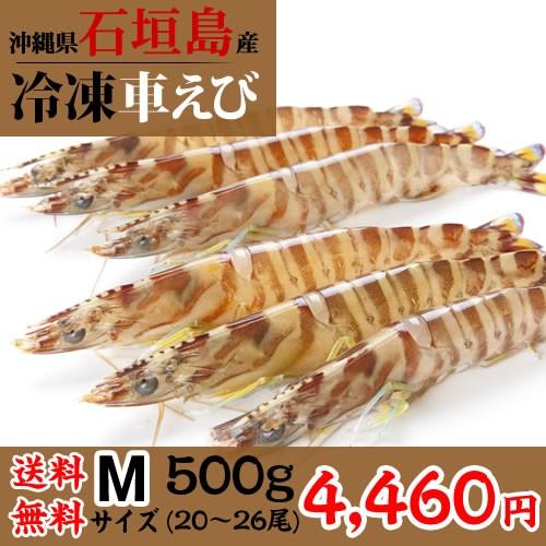 【送料無料】石垣島冷凍車海老500g Mサイズ(20...