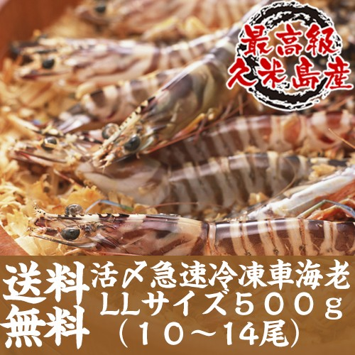 【送料無料】活〆急速冷凍車海老LLサイズ 500g(1...
