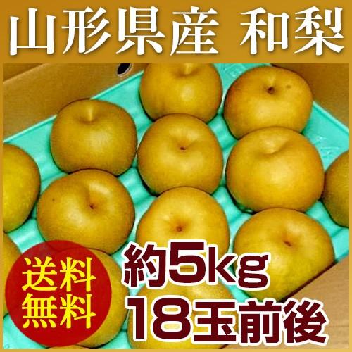 【送料無料】山形県産 和梨 約5kg (18玉前後) 訳...
