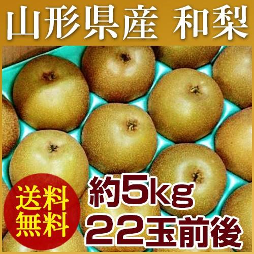 【送料無料】山形県産 和梨 約5kg (22玉前後) 訳...
